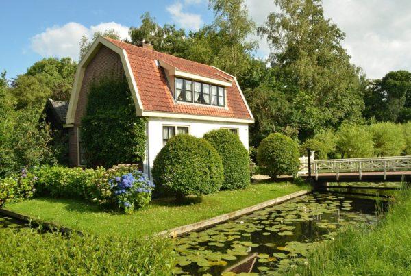 Immobilienwert steigern durch Gartenpflege